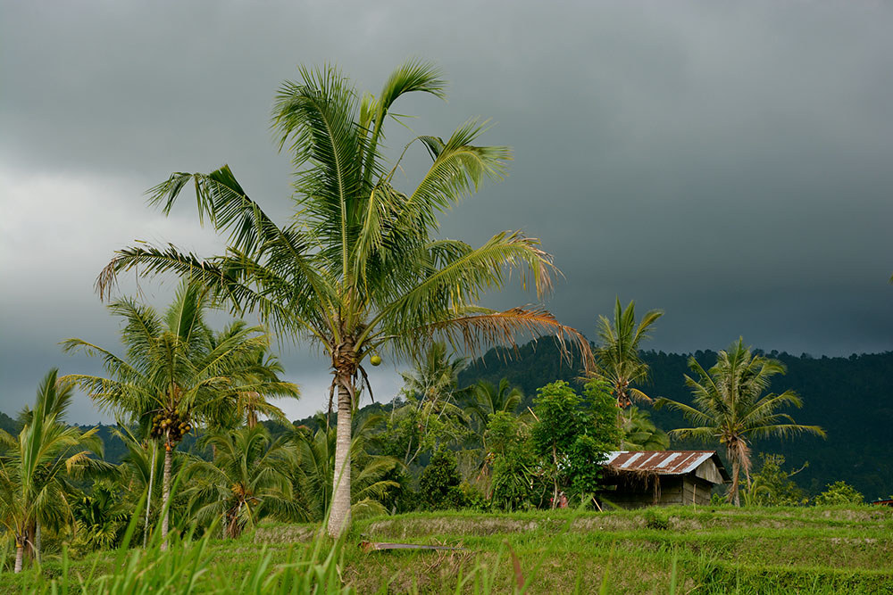 Balinesische Berge