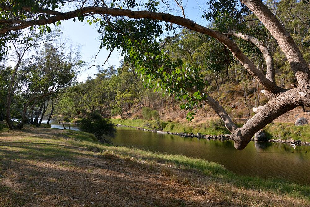 Blackwood River Bridgetown 2