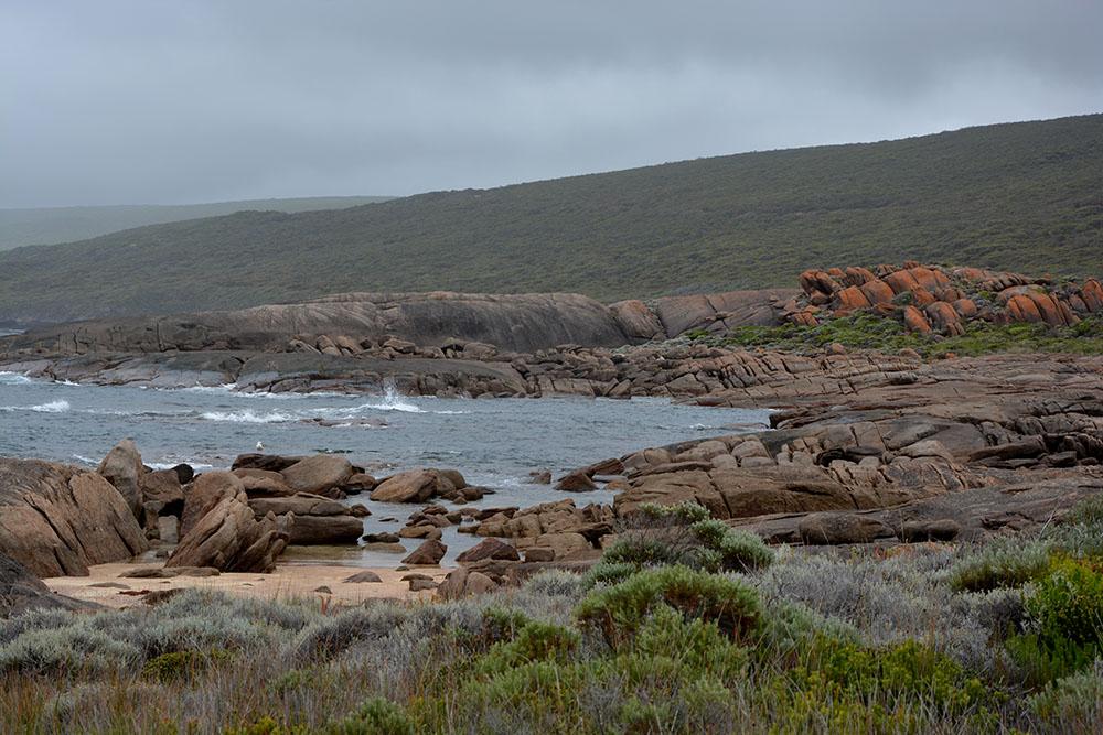 Cape Walk 4