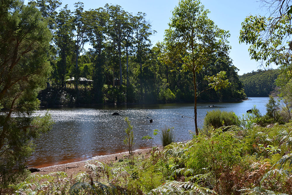 Karri Lake 1