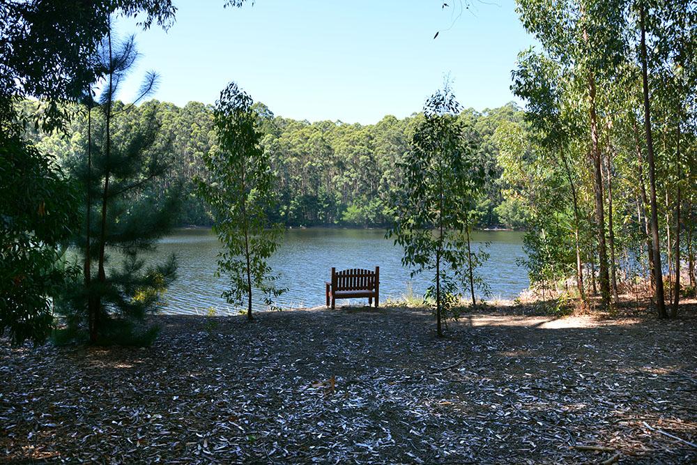 Karri Lake 2