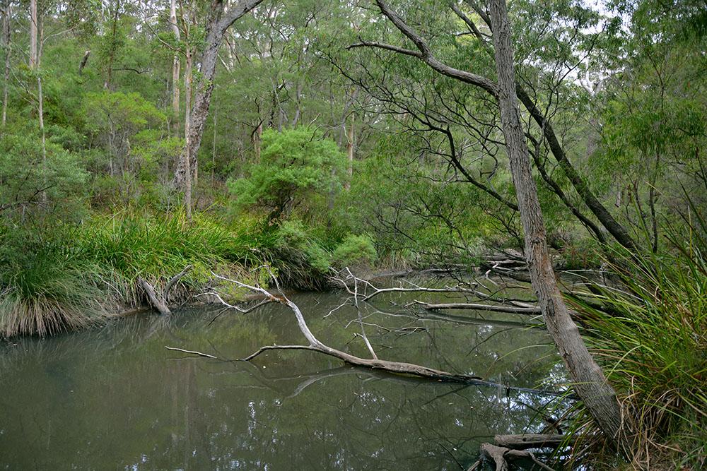 Margaret River 2